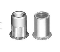 Countersunk head rivet nut