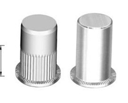 Flat head closed insert nut