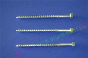 Hexagon Head Wood Screw DIN571