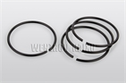 round wire snap ring din7993a / rw