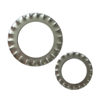 Serrated Lock Washers (DIN6798A)