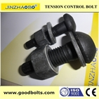 Tor-shear type high strength bolts for steel structure--TC Bolt F2280