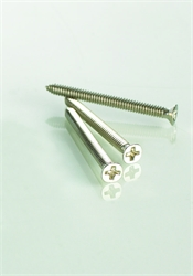 Sharp-ended Machine Screw
