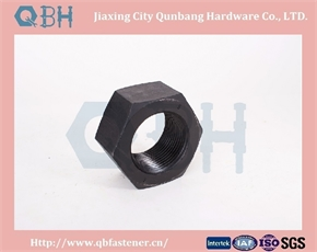 Hex Nuts ANSI B18.2.4.1m M1.6-M36 Black