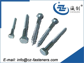 DIN571 wood screw with Hexagon head