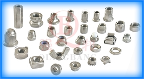 Stainless Steel Nuts 200  201  665  667  304  304HC  316  316L