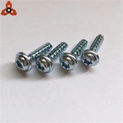 Nonstandard small torx drive screw with washer