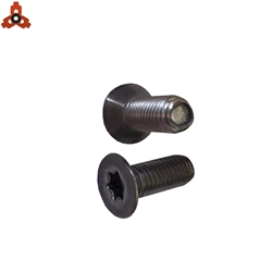 Carbon Steel Counter Sunk Torx Screws