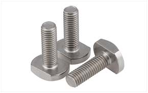 SS T-type bolts