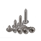 Stainless Steel 304 Hex Socket Self Tapping Screw