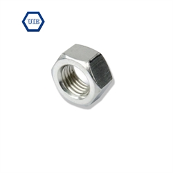 SUS304 HEXAGONAL NUT  DIN934