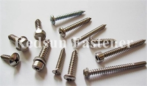 Stainless Steel Self Tapping Screws
