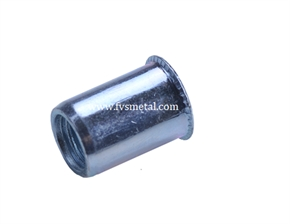 Reduce Head Plain Body Rivet Nut